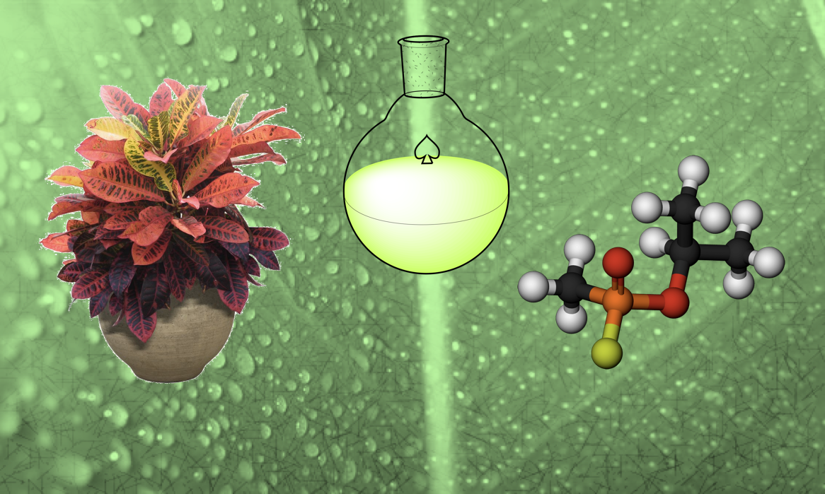 Global project will help promote Green Chemistry in developing countries