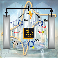Manuscript published by the group of Prof. Braga is in the front cover of Eur. J. Org. Chem.