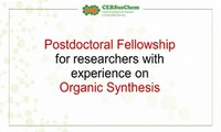 Postdoctoral fellowship for researchers with experience on Organic Synthesis